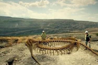 Le plus gros serpent du monde le titanoboa - Le nom de famille le plus porte au monde ...